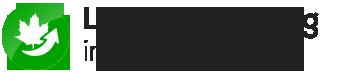 Laubbeseitigung Hattingen | Gelford GmbH